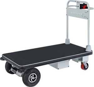 Motorized Cart